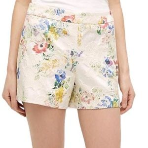 Anthropologie Elevenses Catalonia Lace Shorts